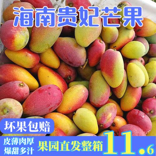 海南贵妃芒果10斤新鲜热带水果应当季红金龙青甜心忙