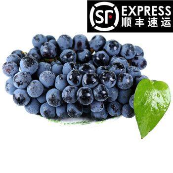 葡萄新鲜时令水果夏黑无籽提子当季云南黑提红提整箱