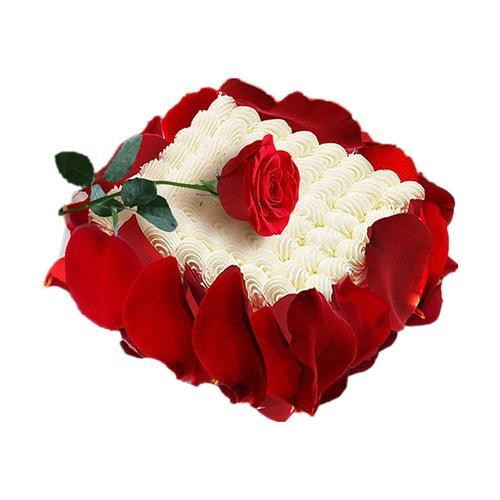 14寸方形玫瑰蛋糕 苏州上海同城配送 女友生日蛋糕
