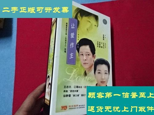【二手9成新】让爱做主 22vcd【二十二集电视剧——王志文 江珊 徐静