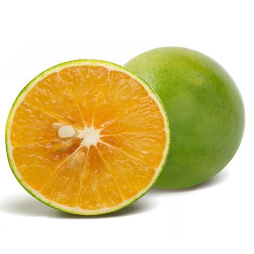 精品海南绿橙 青橙水果新鲜橙子 水果当季橙子5斤顺丰