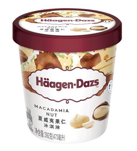 哈根达斯夏威夷果仁冰淇淋雪糕冰激凌冰激淋冰糕冰淇凌 392克/杯
