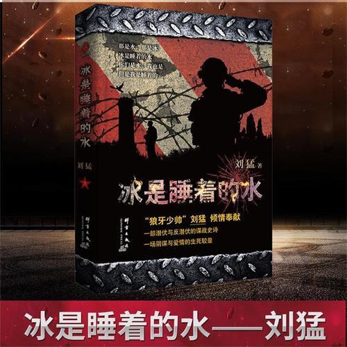 正版 冰是睡着的水 2019 刘猛军事小说 国安特工神秘铁血军事小说畅销