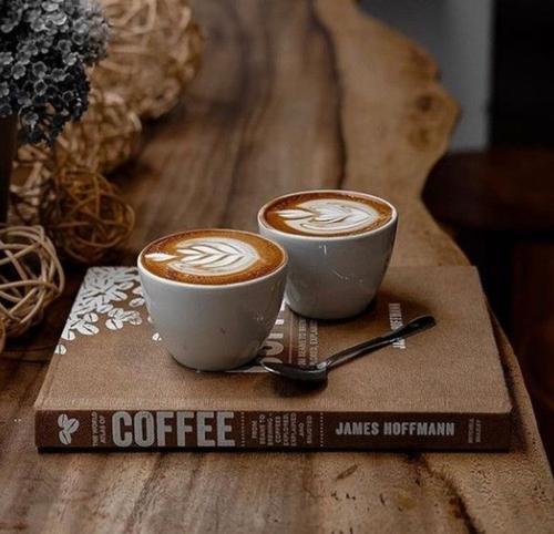咖啡创业套餐丨咖啡机+烤豆机 + 磨豆机+过滤器+咖啡豆+拉花配件套