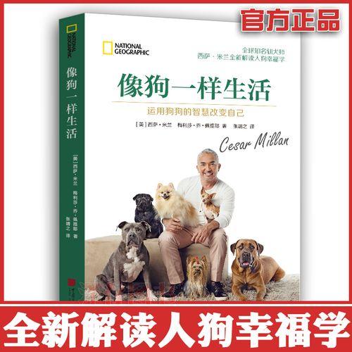 正版现货 像狗一样生活 运用狗狗的智慧改变自己 西萨米兰 报告狗班长