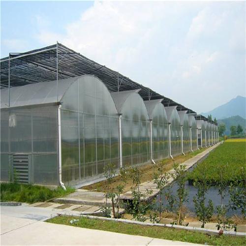连栋大棚镀锌管连栋温室大棚连栋草莓花卉养殖温室