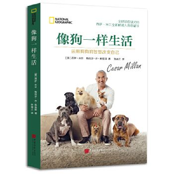 运用狗狗的智慧改变自己 西萨米兰 报告狗班长主持人 宠物狗狗治y