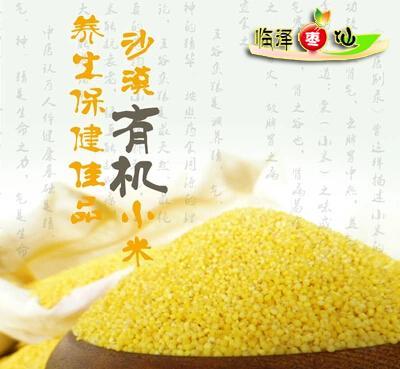 优质小米农家自产地方特产甘肃张掖绿色特产食品两份