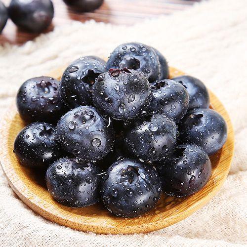 玢菓萱 新鲜上市山东蓝莓鲜果新鲜当季水果孕妇大宝宝