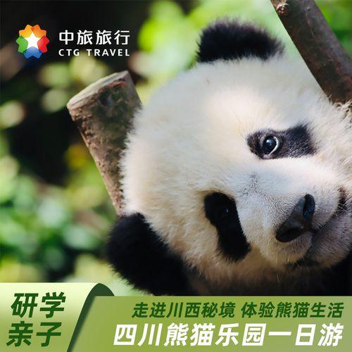 【中旅旅行】四川成都旅游都江堰熊猫乐园1日游 亲子