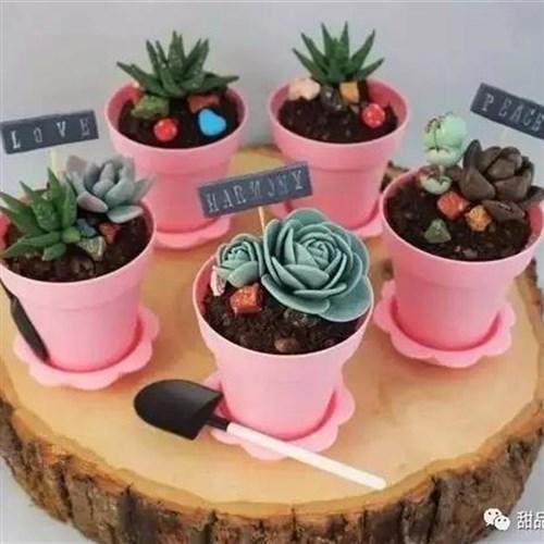 花盆冰激淋一次性创意塑料酸奶杯甜品台杯o铲子甜点盆栽蛋糕盒