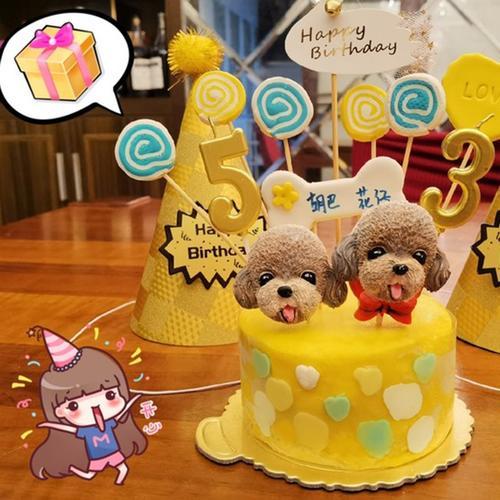 天津市宠物生日蛋糕猫咪吃的狗狗吃的鸡胸肉牛肉可食用蛋糕可定制