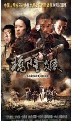 正版 抗日战争电视剧 桥隆飙 dvd光盘 邢佳栋 童瑶