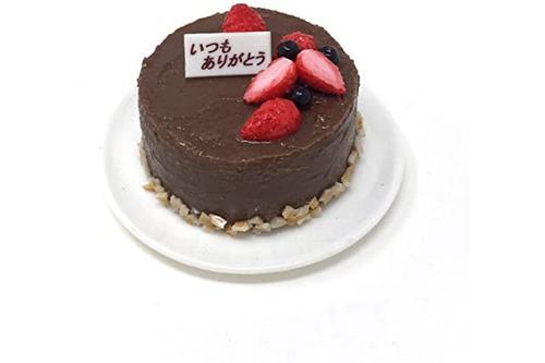 takagi 末武 sanp 食品样品磁吸 装饰蛋糕巧克力奶油留言(感谢您的信)