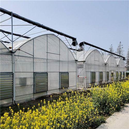 连栋薄膜温室连栋草莓大棚温室大棚建设安装蔬菜水果