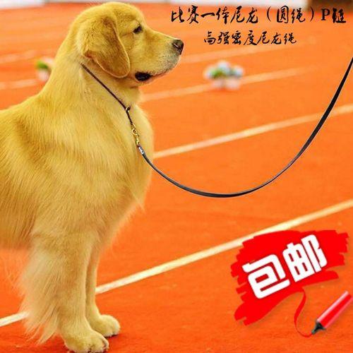重庆四川宠物狗狗比赛牵引绳带项圈p绳训练狗绳链泰迪比熊柯基.
