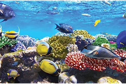 jp london spmur2384 不干胶墙贴 海底珊瑚礁 寻找鱼