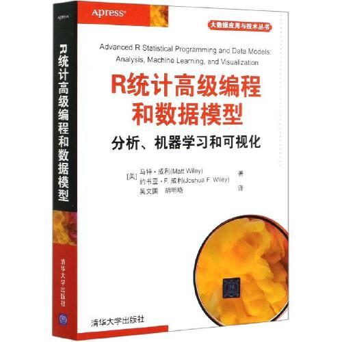 r统计高级编程和数据模型 分析机器学习和可视化 r语言编程教程书籍