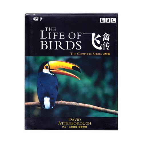 正版bbc纪录片 飞禽传 精装3d9 dvd 光盘碟片