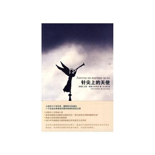【正版旧书二手书9成新】针尖上的天使 [美] 德鲁日尼科夫,王立刚