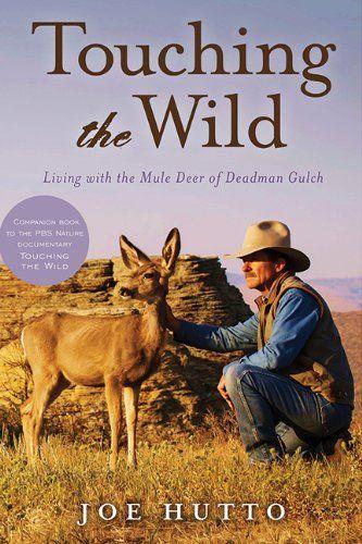 【预订】touching the wild: living with the mule
