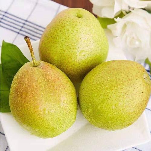 源自库尔勒香梨脆甜多汁10/5/3斤红香酥梨新鲜水果香甜皮薄大果